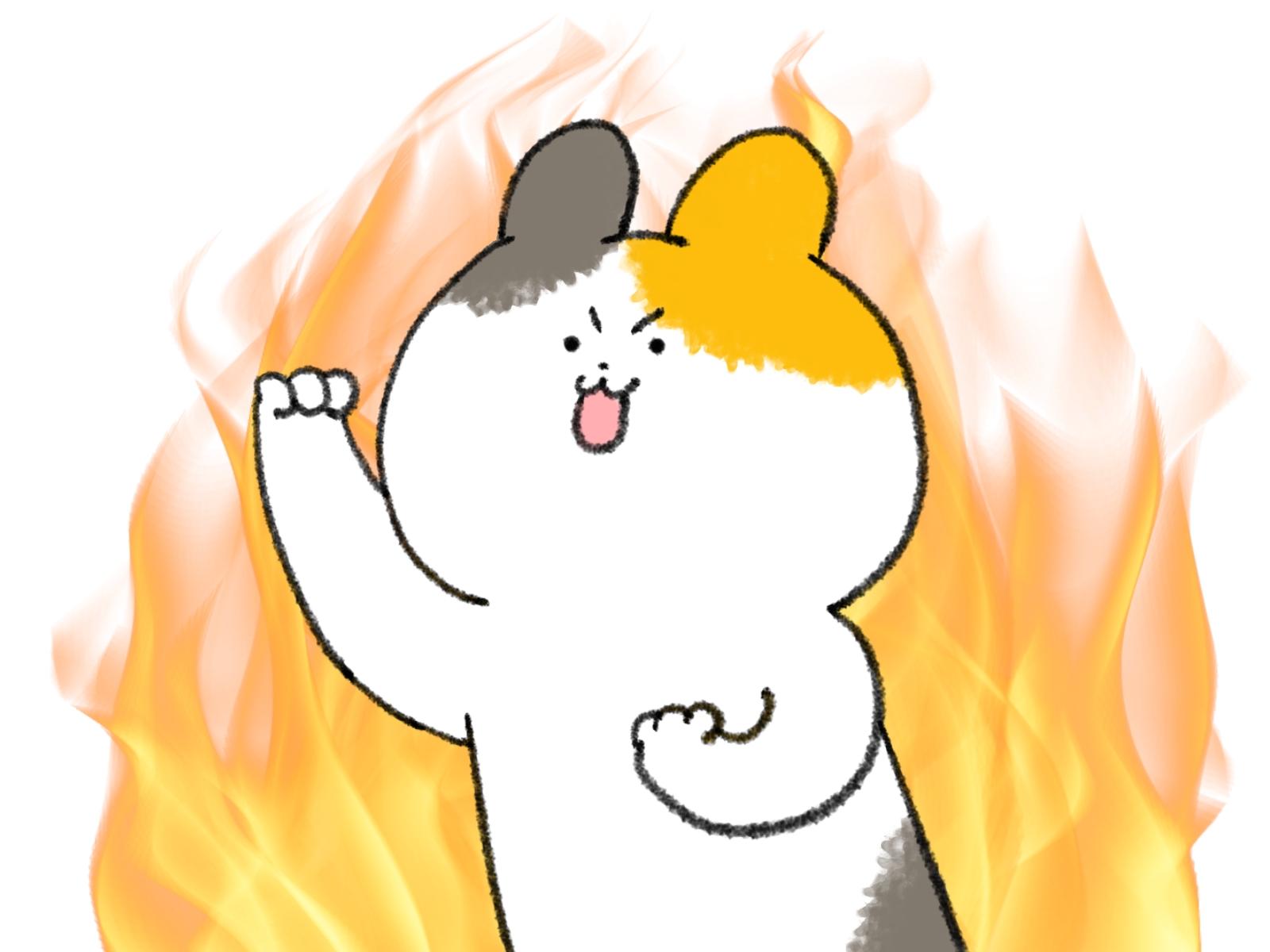 やる気の炎に燃える三毛猫
